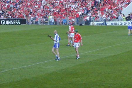 John Mullane, Cork, 2007