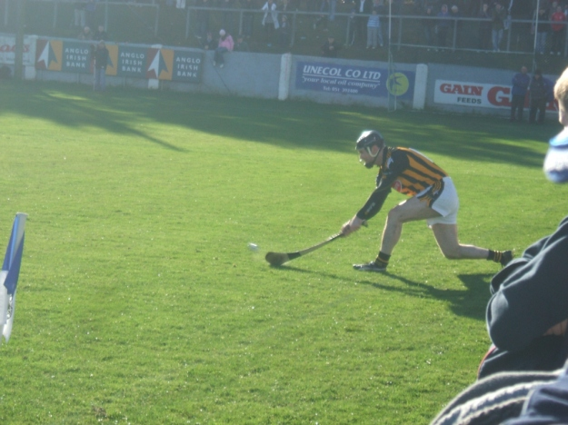 68-waterford-v-kilkenny-1-march-2009-sidelinecut