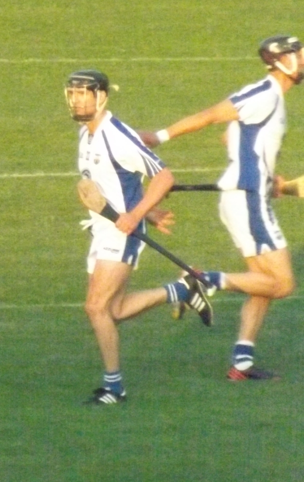 23 Waterford v Kilkenny 13 July 2013 - Tony Browne