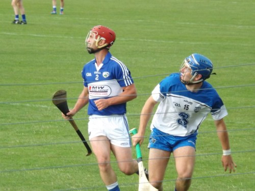 08 Waterford V Laois 28 June 2014
