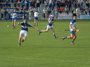 12 Waterford V Laois 28 June 2014