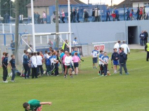 20 Waterford V Laois 28 June 2014