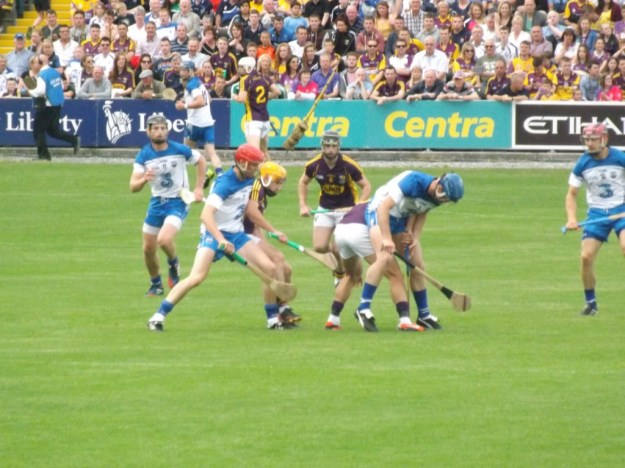 06 Waterford v Wexford 19 July 2014