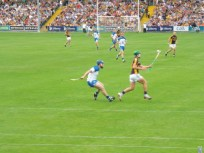 08 Waterford v Wexford 19 July 2014