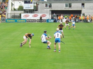 10 Waterford v Wexford 19 July 2014