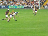 15 Waterford v Wexford 19 July 2014
