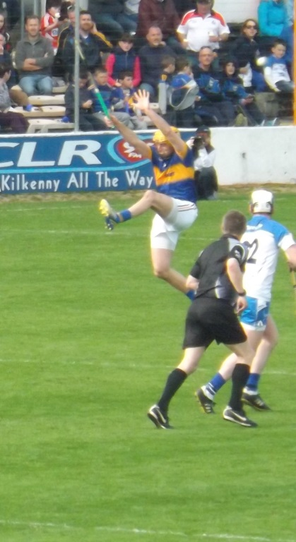 Waterford v Tipperary 19 April 2015 (19)