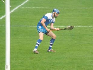 Waterford v Tipperary 12 July 2015 (11)