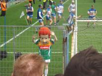 Waterford v Tipperary 12 July 2015 (4)