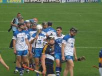 Waterford v Tipperary 12 July 2015 (6)