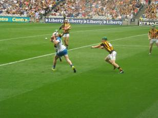 Waterford v Kilkenny 9 August 2015 (12)