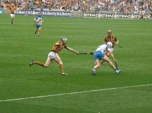 Waterford v Kilkenny 9 August 2015 (16)