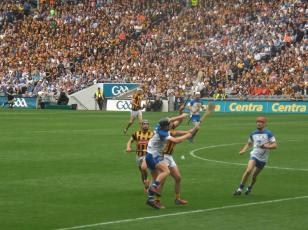Waterford v Kilkenny 9 August 2015 (17)